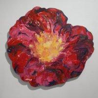 Rosa gallica Tuscany - Mors venit omnia hora